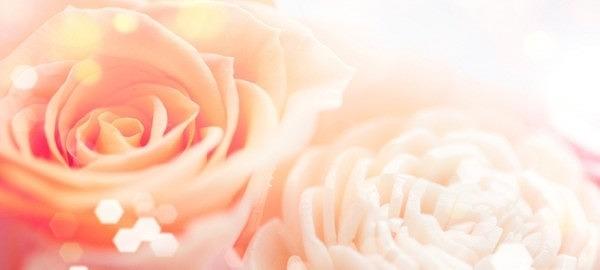 フラワーゼリー 花 ゼリー 手作り キット