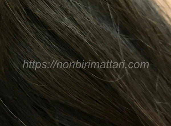 DHC クイックカラートリートメント 白髪染め 口コミ